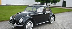 VW 1200 - 55